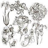 Συλλογή των διανυσματικών συρμένων χέρι λουλουδιών Στοκ Φωτογραφίες