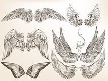Συλλογή των διανυσματικών συρμένων χέρι φτερών για το σχέδιο Στοκ φωτογραφία με δικαίωμα ελεύθερης χρήσης