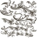 Συλλογή των διανυσματικών συρμένων χέρι floral στροβίλων για το σχέδιο Στοκ Φωτογραφία