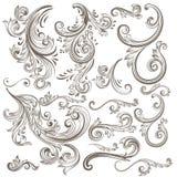 Συλλογή των διανυσματικών συρμένων χέρι floral στροβίλων Στοκ Εικόνα