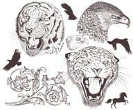 Συλλογή των διανυσματικών υψηλών λεπτομερών ζώων για το σχέδιο Στοκ εικόνες με δικαίωμα ελεύθερης χρήσης
