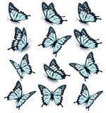 Συλλογή των μπλε πεταλούδων, που πετά στις διαφορετικές κατευθύνσεις ελεύθερη απεικόνιση δικαιώματος