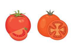 Συλλογή των φρέσκων κόκκινων ντοματών και των διανυσματικών απεικονίσεων σούπας Μισός, φέτα, ντομάτα κερασιών διανυσματική απεικόνιση