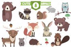 Συλλογή των χαριτωμένων δασικών ζώων απεικόνιση αποθεμάτων