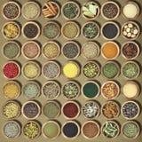 Συλλογή των χορταριών και των καρυκευμάτων Στοκ Εικόνα