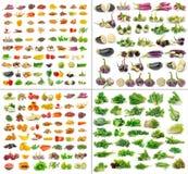Συλλογή φρούτων και λαχανικών που απομονώνεται Στοκ φωτογραφίες με δικαίωμα ελεύθερης χρήσης