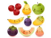 Συλλογή φρούτων και λαχανικών Στοκ Εικόνες