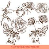 Συλλογή χαραγμένων των διάνυσμα τριαντάφυλλων στο παλαιό ύφος Στοκ Εικόνες