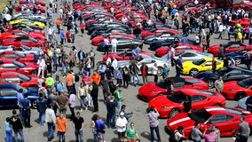 Συλλογή Ferrari απόθεμα βίντεο