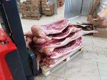 Σφάγια χοιρινού κρέατος που μεταφέρονται στο απόθεμα μεταφορέας στοκ φωτογραφία