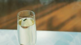 Σφήκα σε ένα γυαλί με ένα ποτό απόθεμα βίντεο