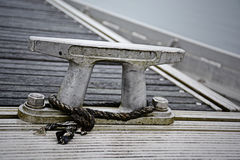 Σφήνα κωπηλασίας Στοκ Εικόνα