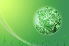 σφαίρα ανασκόπησης πράσινη Στοκ Εικόνα