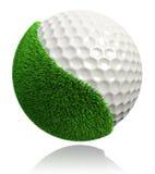 Σφαίρα γκολφ με την πράσινη χλόη Στοκ εικόνα με δικαίωμα ελεύθερης χρήσης