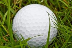Σφαίρα γκολφ στον τραχύ Στοκ φωτογραφίες με δικαίωμα ελεύθερης χρήσης