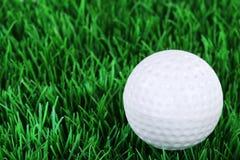 Σφαίρα γκολφ στο λιβάδι Στοκ Εικόνες
