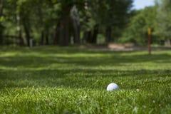 Σφαίρα γκολφ στο πράσινο Στοκ εικόνα με δικαίωμα ελεύθερης χρήσης