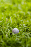 Σφαίρα γκολφ Στοκ φωτογραφίες με δικαίωμα ελεύθερης χρήσης
