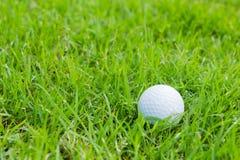 Σφαίρα γκολφ Στοκ Εικόνα