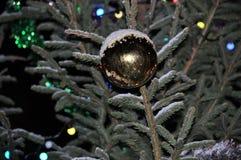 Σφαίρα στο χριστουγεννιάτικο δέντρο Στοκ Φωτογραφίες