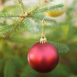 Σφαίρα Χριστουγέννων σε ένα χριστουγεννιάτικο δέντρο Στοκ Φωτογραφίες