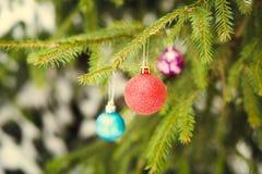 Σφαίρα Χριστουγέννων στον πράσινο fir-tree κλάδο υπαίθριο Στοκ φωτογραφία με δικαίωμα ελεύθερης χρήσης