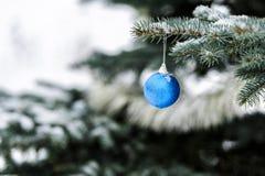 Σφαίρα Χριστουγέννων στο δέντρο στοκ εικόνα με δικαίωμα ελεύθερης χρήσης