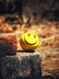 Σφαίρα Smiley στοκ φωτογραφία με δικαίωμα ελεύθερης χρήσης