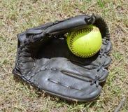 Σφαίρα softball στο άλσος Στοκ φωτογραφία με δικαίωμα ελεύθερης χρήσης