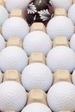Σφαίρες γκολφ στο κιβώτιο για τα αυγά και τη διακόσμηση Πάσχας Στοκ εικόνα με δικαίωμα ελεύθερης χρήσης