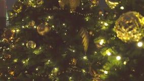 Σφαίρες Χριστουγέννων του χρυσού χρώματος και των γιρλαντών με τους βολβούς στους κλάδους του χριστουγεννιάτικου δέντρου, άποψη κ απόθεμα βίντεο