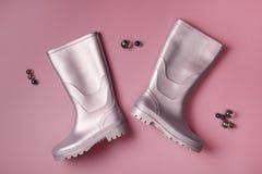 Σφαίρες Gumboots και γυαλιού στο ροζ Στοκ Εικόνα
