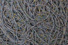 Σφαιρική σύνδεση καλωδίων δικτύων Στοκ Εικόνες