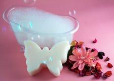 Σφουγγάρι μπανιέρων και πεταλούδων Στοκ Εικόνα