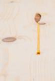 Σφρίγος που στάζει από την τσέπη πισσών pinewood Στοκ Φωτογραφίες