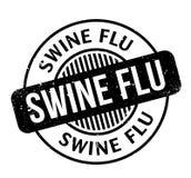 Σφραγίδα γρίπης χοίρων Στοκ Φωτογραφία