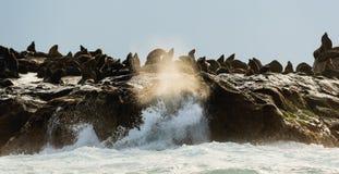 σφραγίδα νησιών στοκ εικόνα με δικαίωμα ελεύθερης χρήσης
