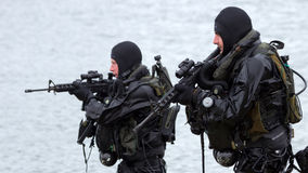 Σφραγίδες ναυτικού Στοκ Εικόνα