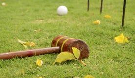 Σφύρα και σφαίρα κροκέ με τις στεφάνες Υπαίθρια παιχνίδια σε μια χλόη Στοκ εικόνα με δικαίωμα ελεύθερης χρήσης
