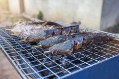 Σχάρα γατόψαρων στη σχάρα ξυλάνθρακα στοκ εικόνα