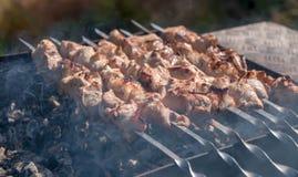 Σχάρα με τον καπνό στη φύση, νόστιμο κρέας στοκ φωτογραφία με δικαίωμα ελεύθερης χρήσης