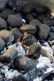 Σχάρα ξυλάνθρακα για BBQ το κόμμα Στοκ Φωτογραφία