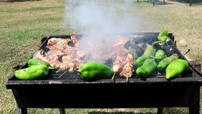 Σχάρα στον κήπο Μπριζόλες, kebabs και πιπέρια στη σχάρα φιλμ μικρού μήκους
