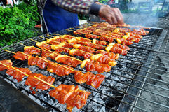 Σχάρα χοιρινού κρέατος σχαρών Στοκ εικόνα με δικαίωμα ελεύθερης χρήσης