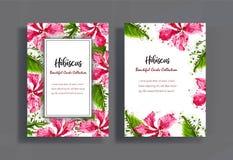 Σχέδιο καρτών με hibiscus τα λουλούδια Στοκ Φωτογραφίες
