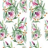 Σχέδιο λουλουδιών διακοσμήσεων Wildflower σε ένα ύφος watercolor Στοκ Φωτογραφίες