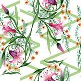 Σχέδιο λουλουδιών διακοσμήσεων Wildflower σε ένα ύφος watercolor Στοκ φωτογραφία με δικαίωμα ελεύθερης χρήσης
