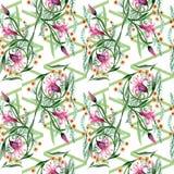 Σχέδιο λουλουδιών διακοσμήσεων Wildflower σε ένα ύφος watercolor Στοκ Εικόνα