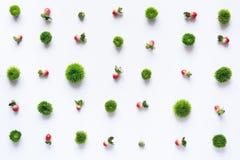 Σχέδιο με τα κόκκινα μούρα και τα πράσινα κεφάλια λουλουδιών Στοκ Εικόνα