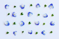 Σχέδιο με τα πράσινα φύλλα και τα μπλε πέταλα λουλουδιών σε ένα άσπρο υπόβαθρο Στοκ εικόνα με δικαίωμα ελεύθερης χρήσης